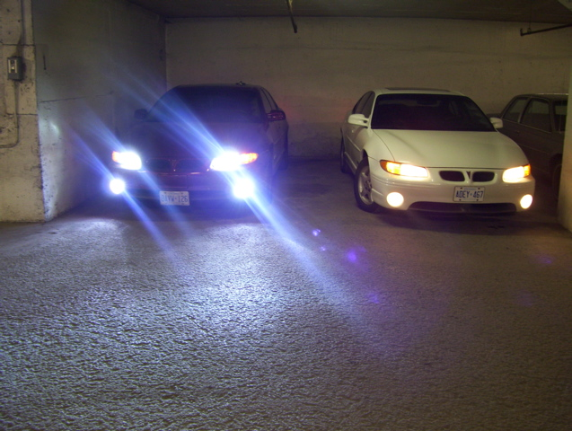 HID Lights vs Halogens